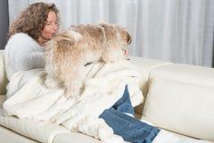 妇女喂养她的狗 免版税库存图片