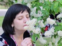 妇女嗅在分支鸟樱桃的一朵花 免版税库存照片