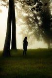妇女在一个有薄雾的森林里 免版税库存照片