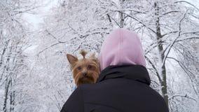 妇女在一条蓝色毯子站立与她回到与头的照相机盖了拿着小约克夏狗的敞篷包裹了 股票视频