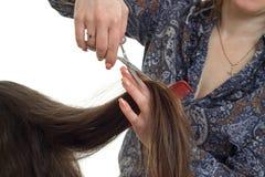 妇女在一根长的棕色头发做一种发型 免版税图库摄影