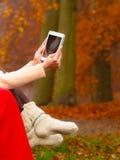 妇女在使用片剂的秋天公园 免版税库存照片