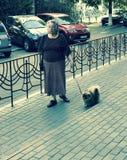 妇女在傲德萨,乌克兰-欧洲遛一条狗-狗 库存照片