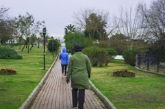 妇女在公园行使走 库存照片
