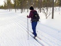 妇女在冬天多雪的风景的越野滑雪 免版税库存照片