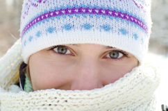 妇女在冬天 免版税库存照片