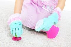 妇女在地毯的清洁污点 库存照片