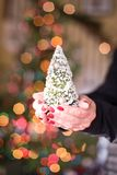 妇女在她的手上的拿着一棵微小的圣诞树 库存照片