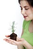 妇女在她的手上的拿着年幼植物 库存照片