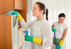 妇女在客厅做清洁 库存照片