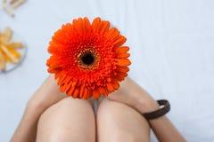 妇女在床上的拿着一朵大丁草花 库存图片