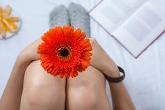 妇女在床上的拿着一朵大丁草花 免版税库存照片