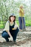 妇女在庭院在春天工作 免版税库存图片