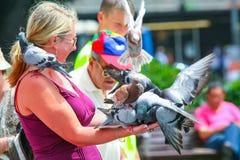 妇女在手上的拿着鸽子 免版税库存照片