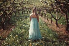 妇女在有花的一个果树园 免版税库存图片
