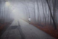 妇女在有薄雾的森林公路走 免版税库存图片