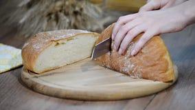 妇女在木板的切口面包 细菌学家 面包生产 影视素材