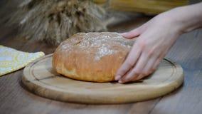 妇女在木板的切口面包 细菌学家 面包生产 股票录像