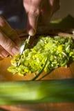 妇女在木板的被切开的新鲜蔬菜 免版税库存图片