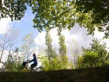 妇女在森林的推进bicicle春天的。 免版税图库摄影