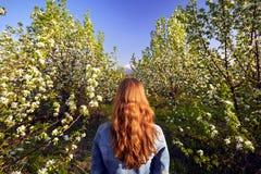 妇女在樱花庭院里 免版税库存照片