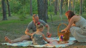 妇女在毯子投入了食物和准备去野餐与家庭 影视素材