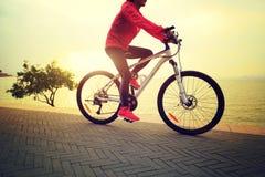 妇女在海边的骑马自行车 图库摄影