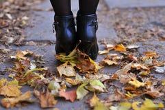 妇女在秋天公园走 免版税库存图片