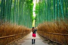 妇女在竹森林拍照片在京都,日本 免版税库存照片