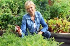 妇女在菜园里 免版税图库摄影