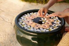 妇女在赤素馨花羽毛花水做在绿色碗的装饰安排  手被隔绝的看法和 库存图片