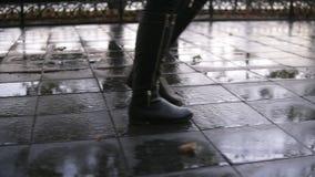 妇女在走沿路面胡同的秋天公园的作为步行 关闭腿和鞋子视图 优美的夫人佩带黑 影视素材