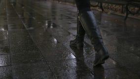 妇女在走沿路面胡同的秋天公园的作为步行 关闭腿和鞋子视图 优美的夫人佩带黑 股票录像