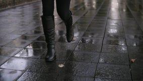 妇女在走沿路面胡同的秋天公园的作为步行 关闭腿和鞋子视图 优美的夫人佩带黑 股票视频