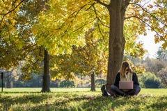 妇女在运作的树下坐膝上型计算机 库存图片