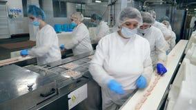 妇女在食物工厂工作,包装从传动机的产品 股票录像