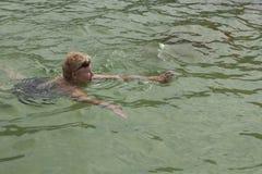妇女在水池游泳 库存照片