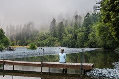 妇女坐简单的木人行桥 免版税库存照片