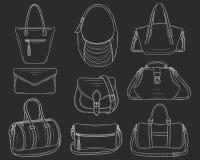 妇女塑造提包汇集,传染媒介剪影例证 皇族释放例证