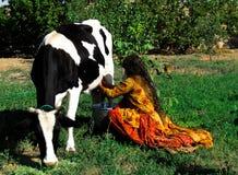 妇女奶牛在农村伊朗 库存照片