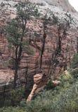 妇女妇女身分在锡安国家公园顶部 库存图片