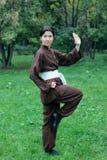 妇女实践的kung fu 免版税库存图片