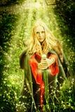 妇女巫婆在奇迹被迷惑的森林里 库存照片