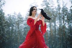 妇女巫婆红色礼服的和有掠夺的在她的手上在多雪的fo 免版税库存图片
