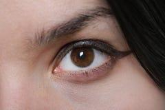 妇女布朗眼睛 库存图片