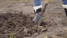 妇女开掘到地面与铁锹的 有铁锹特写镜头的腿 股票录像
