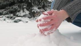 妇女得到极少数雪并且做雪球,gands关闭  与多雪的冷杉木的美好的风景 股票视频