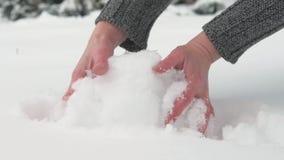 妇女得到极少数雪并且做雪球,gands关闭  与多雪的冷杉木的美好的风景 影视素材