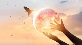 妇女感人的行星地球,人能源消耗  图库摄影