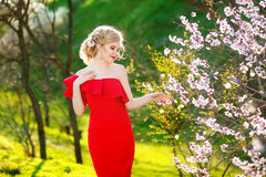 妇女或俏丽的女孩,逗人喜爱的模型,当长,金发摆在与花的开花的树在春天庭院里  免版税库存照片